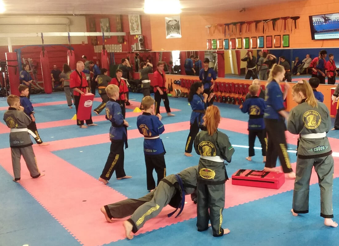 Cobra Martial Arts & Fitness Centres